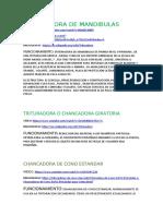 TRITURADORA DE MANDIBULAS (Autoguardado).docx