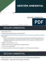 4- Gestión ambiental - Seguro ambiental.pptx