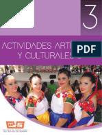 Actividades artísticas y culturales 3