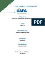 Anatomía y Fisiología del Sistema Nervioso T9.docx