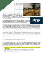 Evaluacion Primer Periodo 6° Sociales Origen de la agricultura