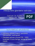Patologia Glandelor Salivare.ppt