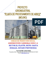 proyectoplantadeprocesamientodearrozmolinoagroservicioscardenillo2050c-180724142323.pdf