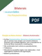Rei Animal_Platelm e Nematel