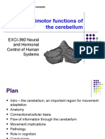 EXCI-360_Cerebellum_2020.pptx