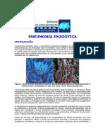Pneumonia Enzóotica Suína