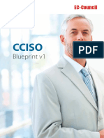 CCSIO-Blue-Print-2019.pdf