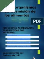 Microorganismos de trasmisión de los alimentos.pptx