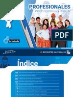PROFESIONALES 18.pdf
