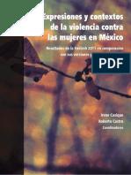 Expresiones y contextos de la violencia