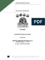 4. syllabus septimo  II-2019