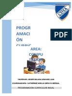 311741884-Programacion-Anual-2016-Computacion-Primaria.docx