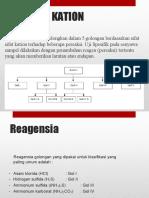 kation-1.pptx
