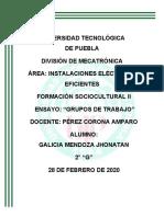 Ensayo_Analisis_Grupo_de_Trabajo