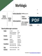 morfologia-esquema