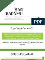 02. Inflamasi.pdf