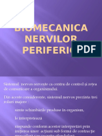 Biomecanica functionala a nervilor
