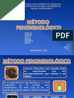 APORTE MARITZA FENOMENOLOGIA.ppt