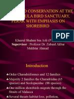Proposal - WATERBIRD CONSERVATION AT THE KUALA GULA BIRD SANCTUARY, PERAK WITH EMPHASIS ON SHOREBIRD