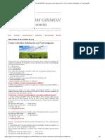 NA SALA COM GISMONTI Assuntos sobre Agronomia_ Como Calcular Adubação na Fertirrigação