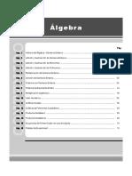 Algebra 1° año de SEC.pdf