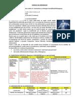 MODULO DE APRENDIZAJES-POR CORONAVIRUS Y DENGUE-Denys.docx