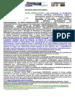 1.2.Apresentacao M.Preventiva Executiva Mobil..pdf