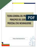 Teoria general del proceso y principios