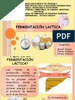 fermentacion lactica.pptx