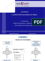 Agnosias Curso Posgrado (9).ppt