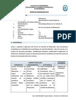 MODELO-DE-SESION-DE-APRENDIZAJE (1)
