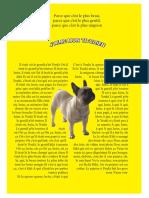 Emily petit chien projet.pdf