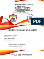 Perfil de proyecto de carrera práctica profesional 2