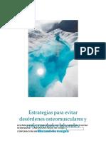 estrategias de manual de cargas.docx