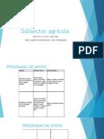 PRESENTACIÓN DE PROGRAMAS DE APOYO.pptx
