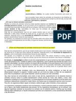 Animales Nocturnos parte 1.pdf