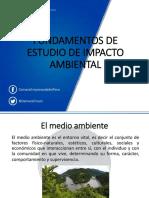 FUNDAMENTOS DE ESTUDIO DE IMPACTO AMBIENTAL