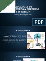 Patología de Motoneurona Superior e Inferior-Rehabilitacion