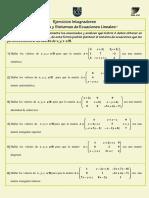 Ejercicios Integradores_Matrices y Sistemas de Ecuaciones Lineales.pdf