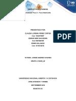 FaseColaborativa_Productividad_Paso 2 - Fase Intermedia