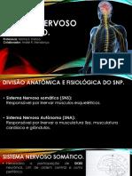 15_sistema_nervoso_periférico.pdf