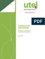 Desarrollo sustentable_C_Semana_1_Evidencia de aprendizaje..docx