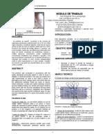 informe lab de circuitos (modulo de trabajo)