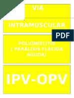 CONCETO DE VACUNA.docx