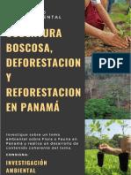 COBERTURA BOSCOSA, DEFORESTACIÓN Y REFORESTACIÓN EN PANAMÁ