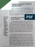 Conceptos fundamentales de Jean Piaget.pdf