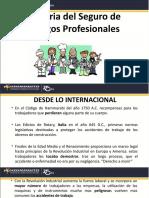 Historia del Seguro de Riesgos Profesionales (1)
