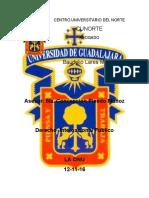 DERECHO_INTERNACIONAL_LA_ONU.docx