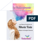 Qué-son-las-Placas-Energeticas-FOLLETO-TESLAVITALIS-COLOR.pdf