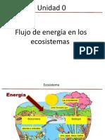 Biología 2°  PPT Flujo de Energía (1) (3).pptx